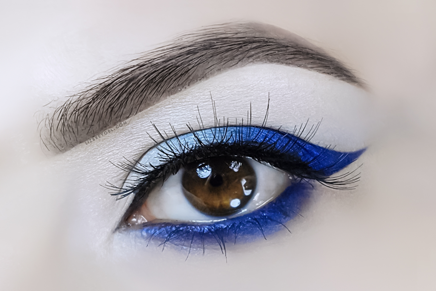 a close-up picture of an eye with dramatic makeup look