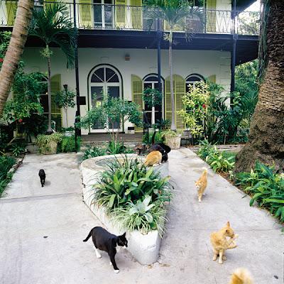casa museo Hemingway