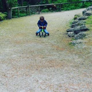 Welser Tiergarten