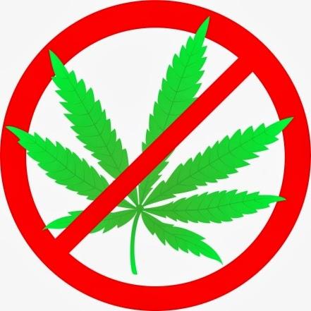say virtually no to make sure you bud legalization essay