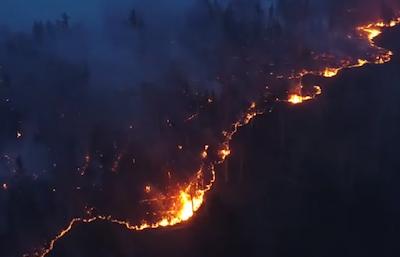 в Сибири в огне уже до 4,5 млн га леса
