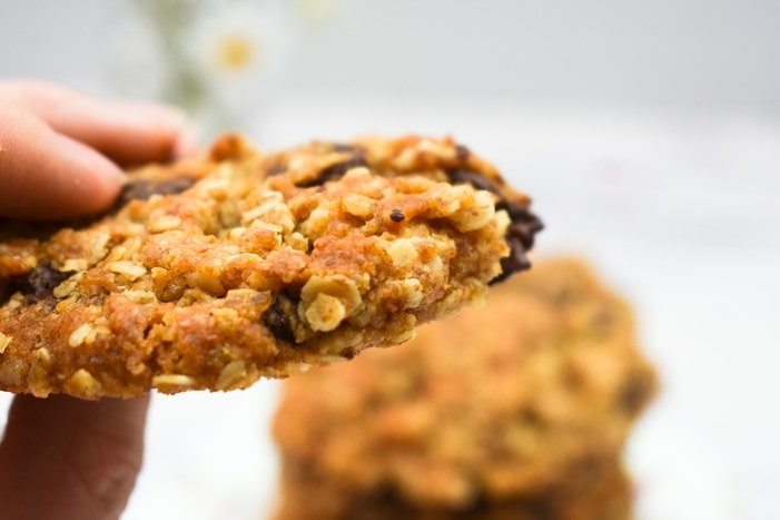 Close up of chocolate chip oat cookie in hand