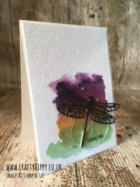 This image shows a handmade card with a white background and water-coloured segment in Elegant Eggplant, Crushed Curry and Garden Green, a black dragonfly cut out with the Detailed Dragonfly Thinlits Dies sits above.