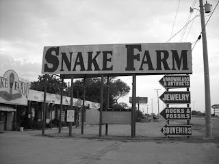 snake farm texas arrowheads artifacts fossils souvenirs roadside tourist