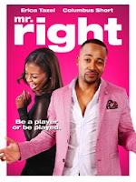 Mr. Right (2015) online y gratis