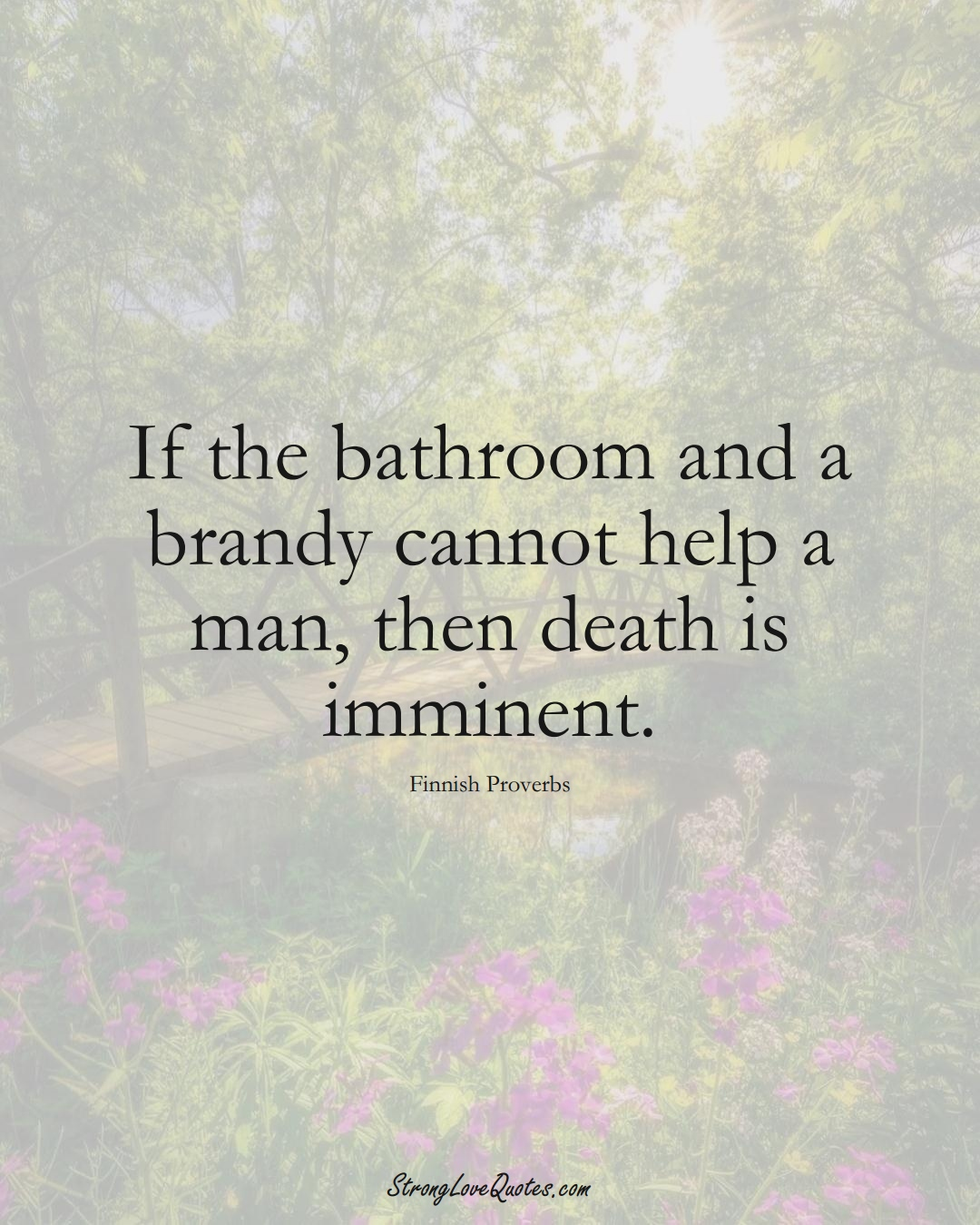 If the bathroom and a brandy cannot help a man, then death is imminent. (Finnish Sayings);  #EuropeanSayings