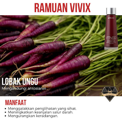 purple carrot ramuan vivix