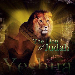 Questions about Yeshua (Jesus)? Answers in Hebrew & English.