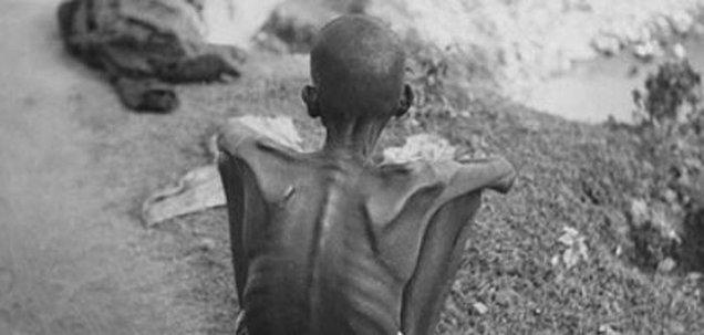 भूख से मरते हैं, लोग तो क्या हुआ ?