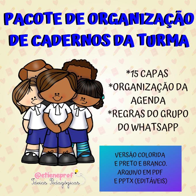 PACOTE DE CAPINHAS E ORGANIZAÇÃO DE AGENDA