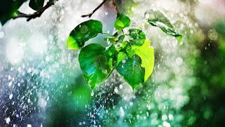 बरसात का सपना