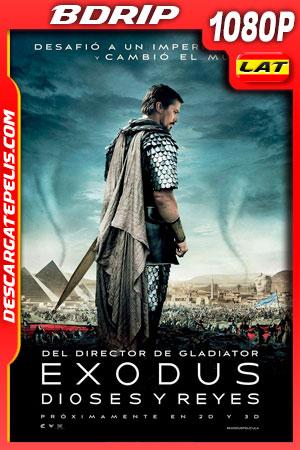 Éxodo: Dioses y Reyes (2014) 1080p BDrip Latino – Ingles