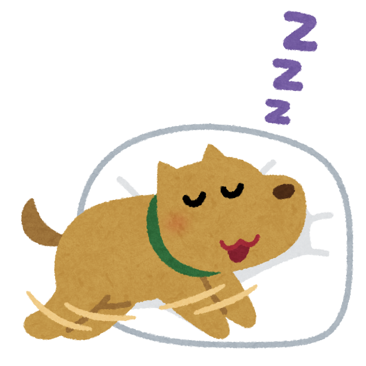 犬 が 寝る 歌