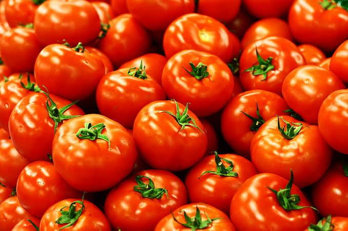 Tomat,  buah populer