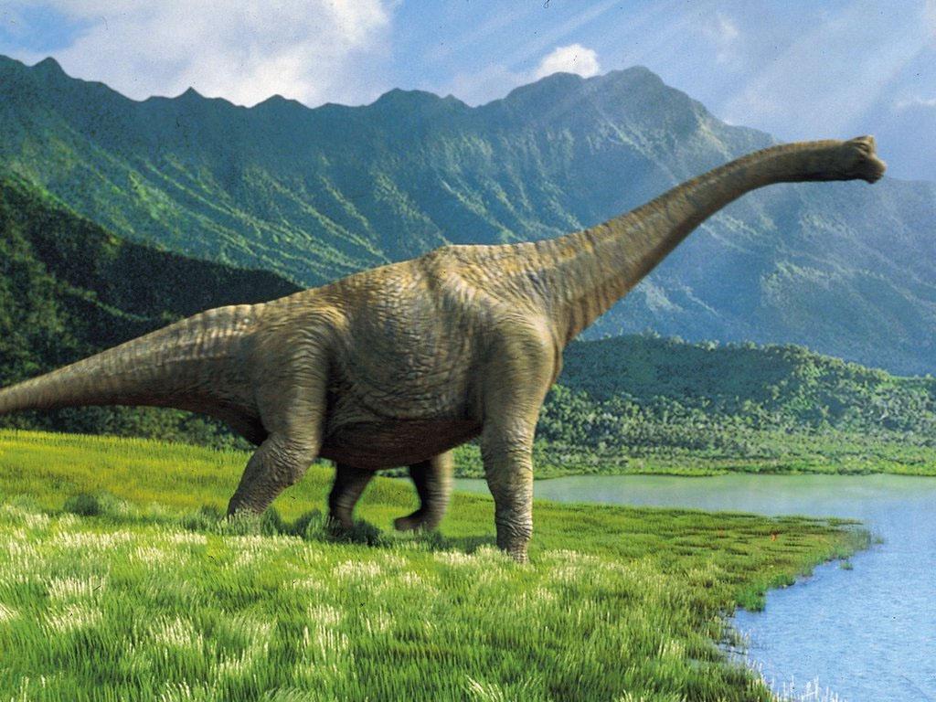 Imagenes De Dinosaurios Reales ¿dinosaurios vivos en la actualidad? imagenes de dinosaurios reales