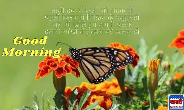 Good Morning Shayari in Hindi with HD - Images, गुड मॉर्निंग कोट्स डाउनलोड