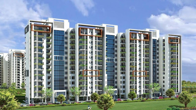 Motia Group in Chandigarh