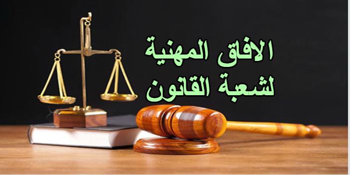 ما هي الافاق المهنية لشعبة الدراسات القانونية ؟