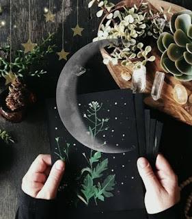 Magiche erbe per la buonanotte
