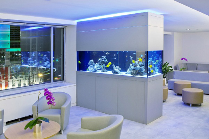 The aquarium is extremely impressive display in your home. Having a fish tank in your home can be absolutely relaxing and gives an exciting experience in your home. Aquariums is a simple decor but seductive that makes it hard your eyes off.