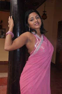 South Actress Hot Saree Pics