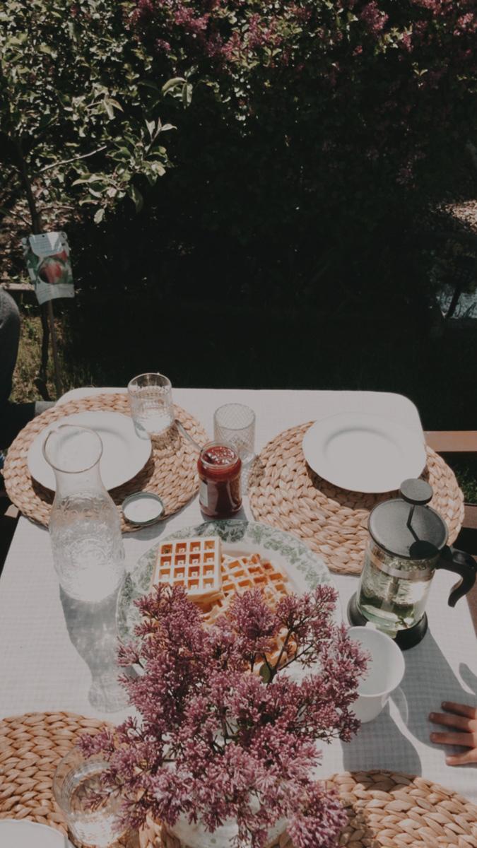 piknik na ogrodzie