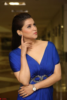 Mannara Chopra in Short Blue Dress at Rogue Movie Teaser Launch 1st March 2017 111.JPG