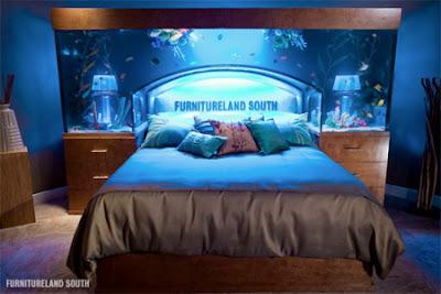 Ni Orang Panggil Aquarium Bed Macam Best Je Kan Kita Tengok Pun Nampak Sejuk Dan Nyaman Buka Mata Ikan Jangan