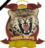 https://4.bp.blogspot.com/-xZWA7sD_H2E/UjbJ5WWFsvI/AAAAAAAABiU/uiBI-cHebwo/s1600/ESCOLA+DE+SAMBA+SAMBA+NO+P%C3%89+LUTO.jpg