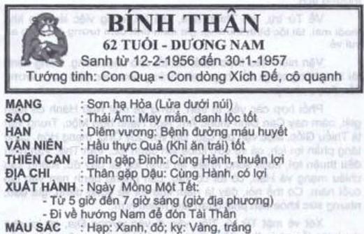 TỬ VI TUỔI BÍNH THÂN 1956 NĂM 2017