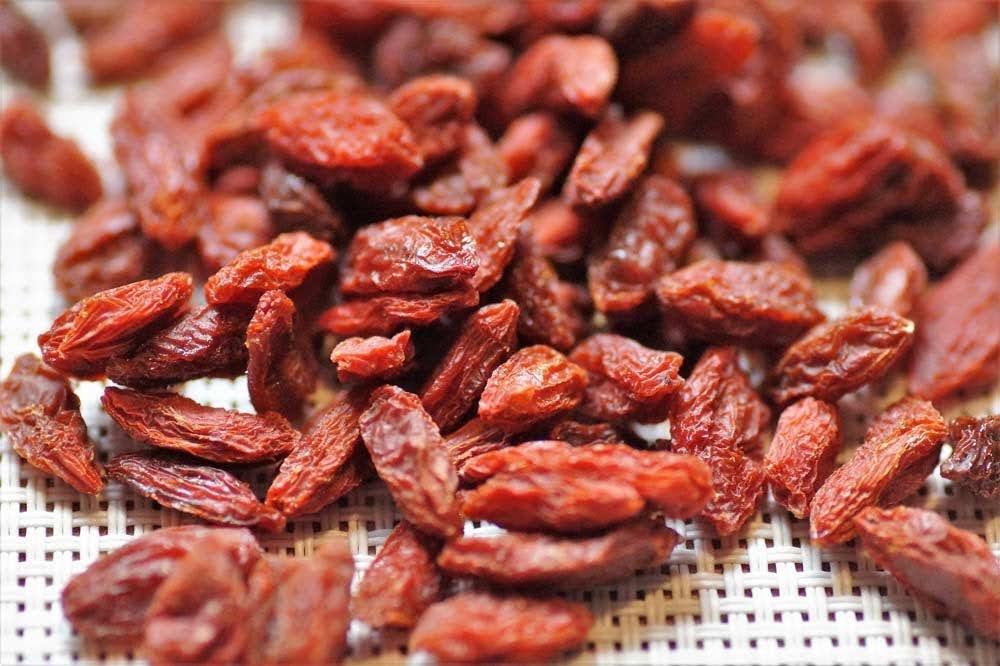 lista de frutos bayas goji propiedades de las bayas de goji propiedades frutos rojos