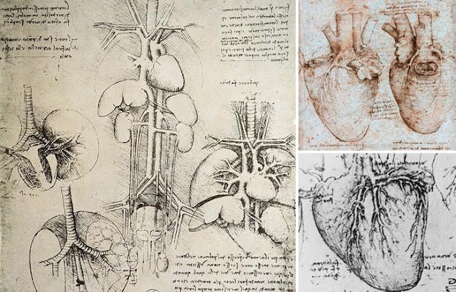 Coração nos desenhos de Leonardo