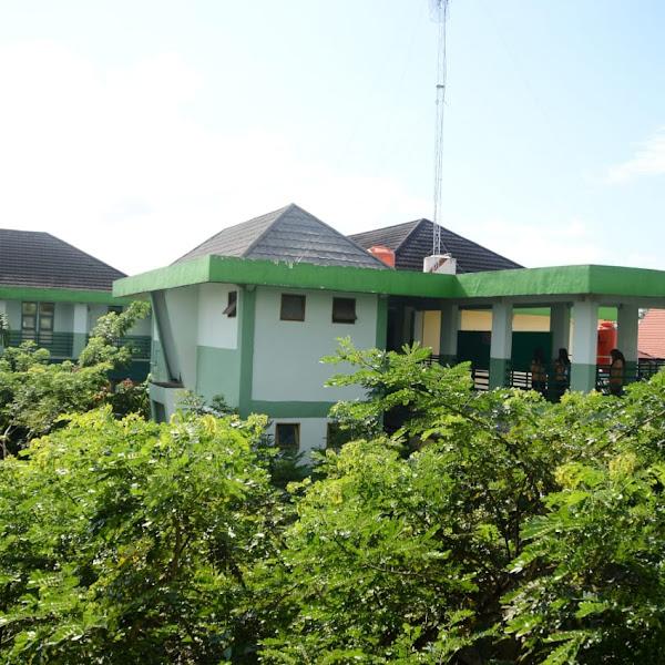 Komitmen Jadikan Sekolah Hijau, 678 Tanaman Tumbuh Subur di SMAN 1 Pontianak