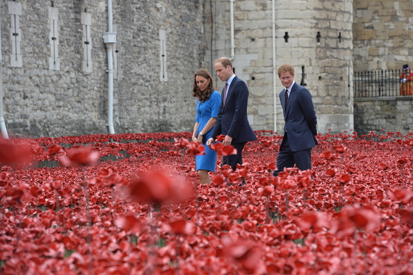 Tower of London's 'Blood Swept Lands and Seas of Red' poppy installation in the Tower of London