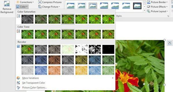 Cara Edit Gambar di Microsoft Word 2016 - Nutekno