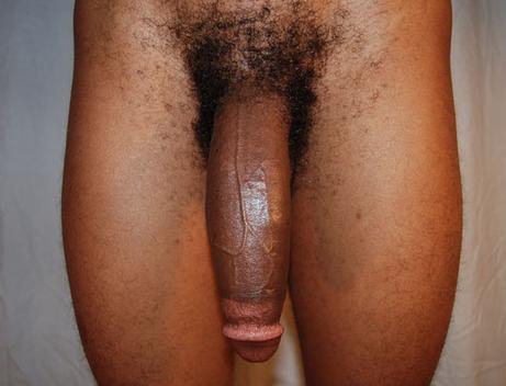big black flaccid cock