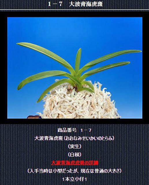 http://www.fuuran.jp/1-7.html