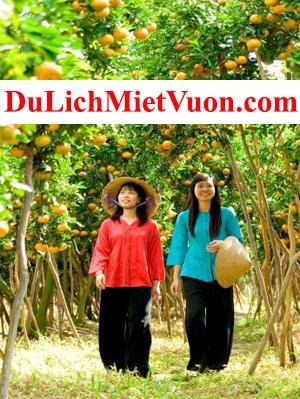 DuLichMietVuon.com