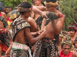Sejarah Dabba di Sabu Raijua