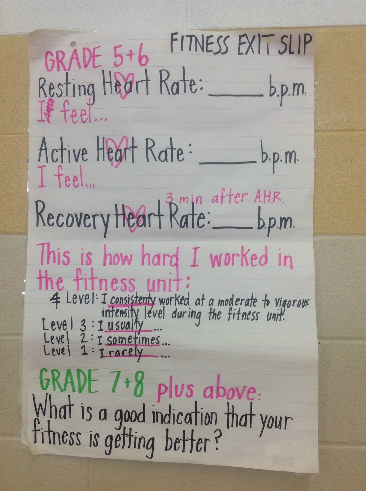 Hpe Merritt Health And Physical Education