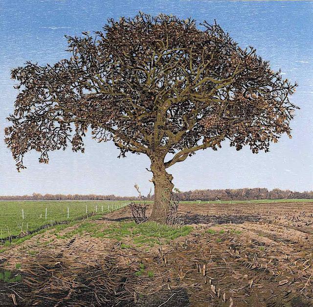 Siemen Dijkstra, a tree in a farm field