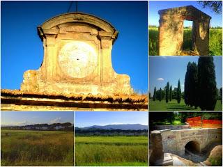 Immagine - Cascine - Tavola - Prato