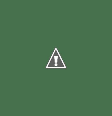 a blockage in the heart blood vessel