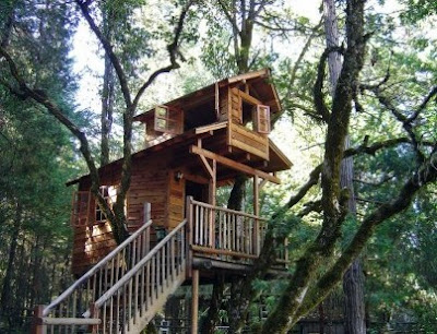 Inspiration tree house design unique and creative