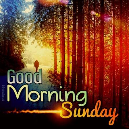 Good morning sunday new images