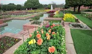 Mughal Garden Delhi मुगल गार्डन