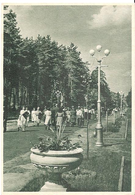 Centrālā aleja Kultūras un atpūtas parkā / Центральная аллея Парка культуры и отдыха.