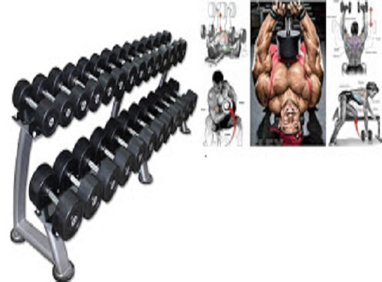 4 Day Upper Lower Dumbbell Workout Plan For Best Results