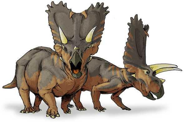 pentaceratops-dinosaur-بينتاسيراتوبس-ديناصور