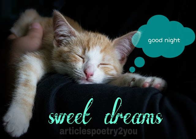 Good night dreams | sweet night images